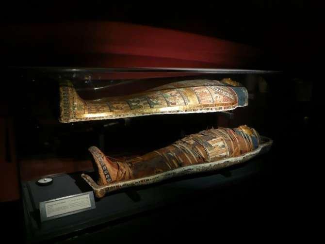 museo_alejandria_092-2699