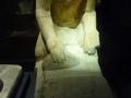museo_alejandria_030-2620