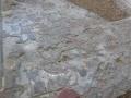 anfiteatro_romano_039-2497