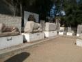 anfiteatro_romano_081-2543