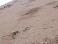 piramide_romboidal_016-2913