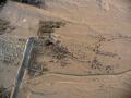 egipto_aire_2010_109-8350