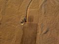 egipto_aire_2010_112-8353