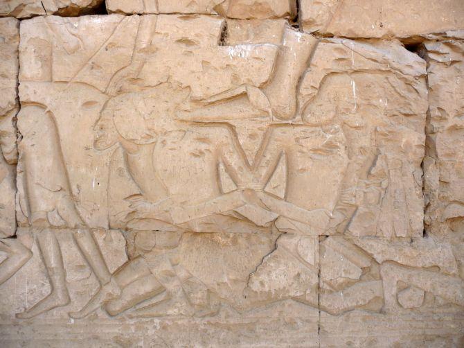 templo_seti_2010_019-6133