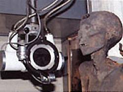La paleopatología en Egipto: pasado y presente