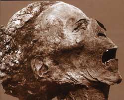 Mito, magia, observación y experiencia: los fundamentos de la enfermedad en el Antiguo Egipto
