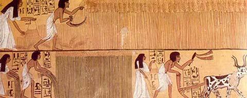 Fig. 24. Senedyem y su esposa realizan trabajos agrícolas en los campos de Yaru- mundo de ultratumba, el más allá-. Tumba de Senedyem en Deir el-Medina, Dinastías XIX-XX.