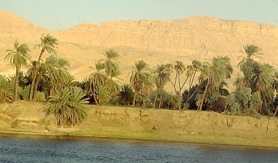 Árboles y flores en el antiguo Egipto