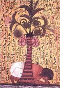 Pashedu se arrodilla y se inclina ante una palmera datilera que hay junto al canal para beber agua. Pintura de la tumba de Pashedu (TT339). Deir el-Medina, XIX dinastía