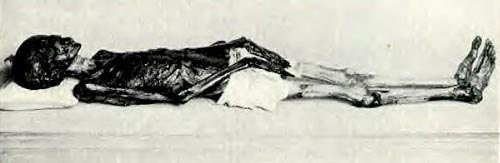 Momia de Tjesmoutpert