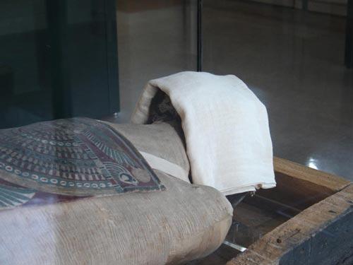 Detalle de la cabeza de la momia