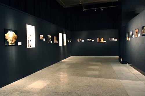 Fig. 5. Vista de una de las salas de exposición del Museu d'Arqueologia de Catalunya.