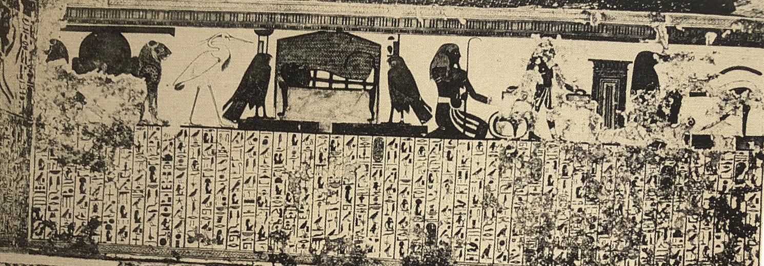 Imagen 4. Fotografía de la tumba en el descubrimiento