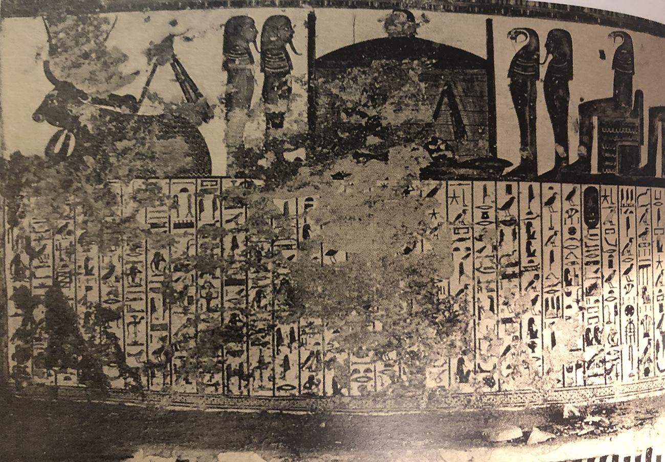 Imagen 7. Fotografía del muro norte en el descubrimiento. La imagen de la vaca celeste y la capilla están actualmente desaparecidas