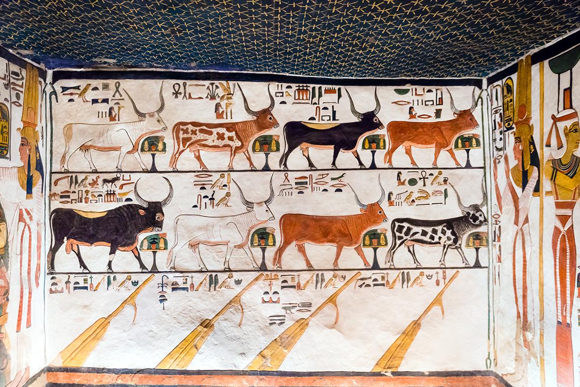 Imagen 10. Nefertari ante las siete vacas, el toro y los remos, muro sur Escenificación del capítulo 148 del Libro de los Muertos