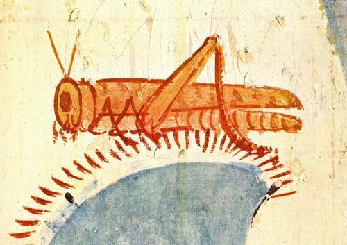 Ortópteros (saltamontes, langostas y mantis)