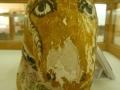 museo_kharga (184)