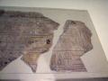 Boston-fine-arts-P_1131a